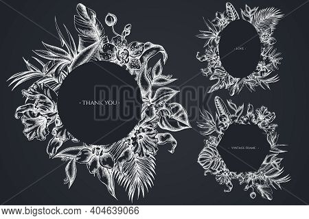 Floral Frames With Chalk Monstera, Banana Palm Leaves, Strelitzia, Heliconia, Tropical Palm Leaves,