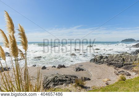 Rocky Beach With Rough Sea Breaking And White Foam And Pampas Grass Blowing In Wind In Foreground