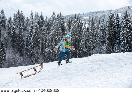 Winter Kid In Snow Walks With Sled. Happy Christmas Family Vacation Concept. Child Sledging Outside