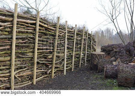 Natural Hedge From Dead Wood Benjes Hedge