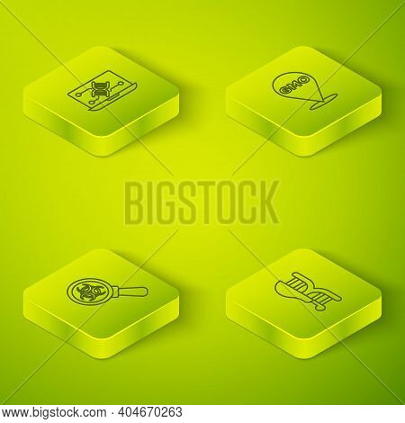 Set Isometric Line Gmo, Biohazard And Magnifying Glass, Genetically Modified Chicken And Engineering
