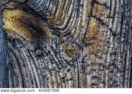 Abstraction Of A Burnt Wooden Door, With An Old Nail And A Wooden Knot In Blue And Orange, Burnt Woo