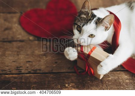 Happy Valentines Day. Cute Cat Holding Gift Box With Red Ribbon And Velvet Hearts On Rustic Wooden B