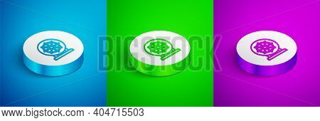Isometric Line Dharma Wheel Icon Isolated On Blue, Green And Purple Background. Buddhism Religion Si