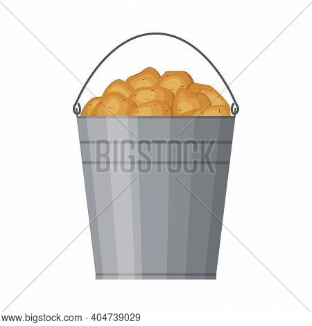 Metal Bucket Filled With Potatoes Isolated On White Background. Harvested Crop, Pile Of Tubers Plant