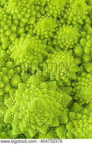 Romanesco Broccoli Or Roman Cauliflower Textured  Background. Healthy  Vegan Food Concept.