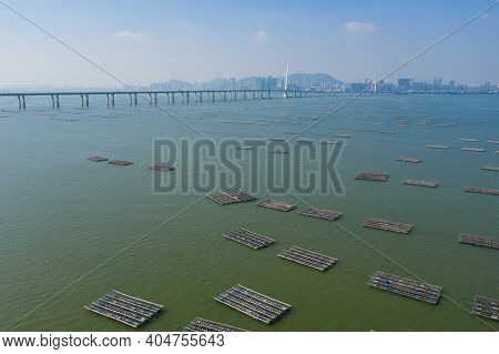 Yuen Long Lau Fau Shan oyster farm in Hong Kong