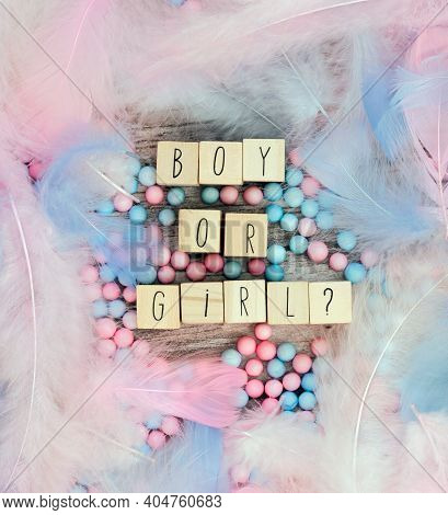 Boy Or Girl Text Surrounded With Pastel Colored Feathers, Gender Reveal Gathering Party Concept. Bab