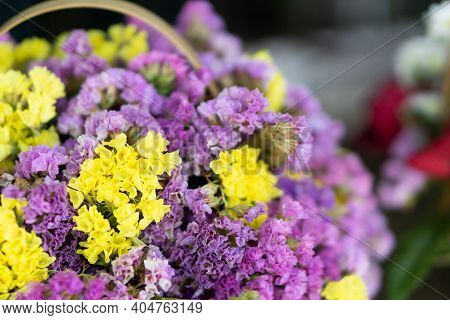 Beautiful Purple And Yellow Flowers In Basket, Verbena Flowers Background.
