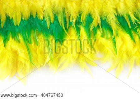Brasil Mardi Gras Carnival Background With Multicolor Feathers