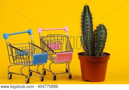 Shopping Concept. Cactus In Pot And Supermarket Trolleys  On Yellow Studio Background. Minimalism