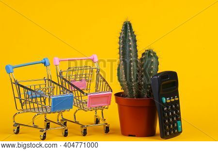 Shopping Concept. Cactus In Pot And Supermarket Trolley With Calculator On Yellow Studio Background.
