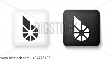 Black And White Cryptocurrency Coin Bitshares Bts Icon Isolated On White Background. Physical Bit Co