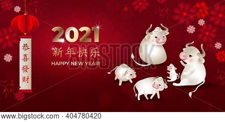 Chinese New Year 2021 In Gold. Banner With White Oxes. Bulls Family, Lantern, Flowers, Red Backgroun