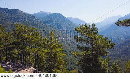 Top View Of Mountain Valley Covered With Greenery. Clip. Behind Pine Trees, There Is Breathtaking Vi