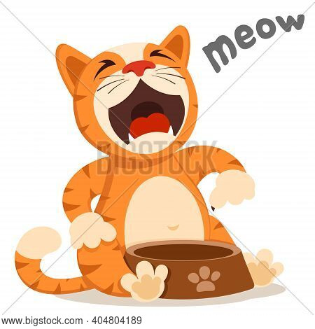 The Cat Sits And Meows Near The Plate. Cat Asks For Food, Character