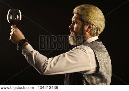 Bartender At Bar. Experienced Sommelier Taste Wine. Barman Tasting Red Wine At Degustation. Male Som