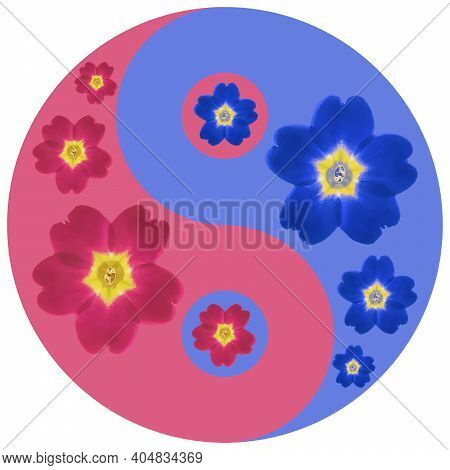 Floral Symbol Yin-yang. Verbena. Geometric Pattern Of Yin-yang Symbol, From Plants On Colored Backgr