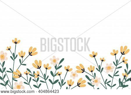 Horizontal Botanical Backdrop With Border Of Delicate Blooming Yellow Flowers. Floral Flat Vector Il