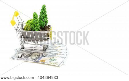 Toy Shopping Trolley With Fertilized Soil And Toy Plastic Trees Standing On Dollar Bills Isolated On