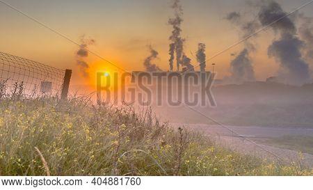Colorful Dune Vegetation Under Rising Early Morning Sun In Industrial Landscape. Wijk Aan Zee, Noord