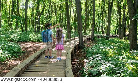 Kids Are Walking Hand In Hand On A Hiking Trail Along An Equipped Wooden Path In The Forest Of The R
