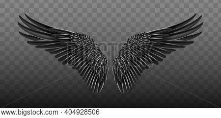 Black Realistic Wings. Vector Illustration Bird Wings Design. Black Isolated Pair Of Falcon Wings, 3