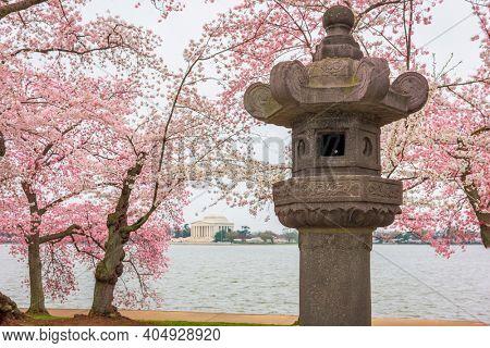 The Japanese Lantern at West Potomac Park around the Tidal Basin in Washington DC.