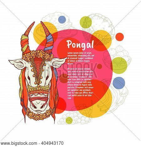 Vector Greeting Card For Agricultural Pongal Harvest Holiday In India.
