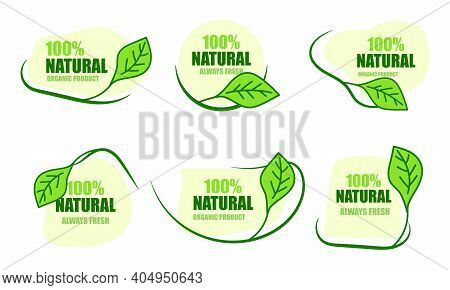 Collection Of 100% Natural Green Icon Isolated On White. Natural Fresh Food And Organic Food Icons.