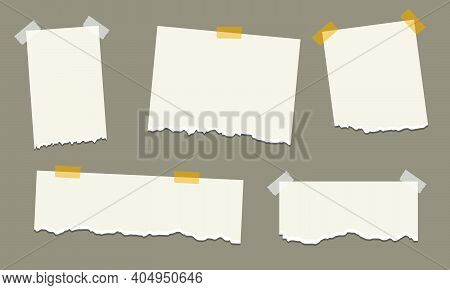 Pack Of Torn Paper Of Various Shapes With A Plaster. Torn White Paper With Sharp Tear Set. Scrap She