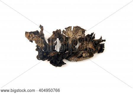 Dried Horn Of Plenty Mushroom (craterellus Cornucopioides) On A White Background