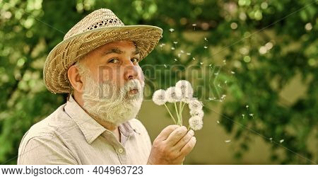 Happy And Carefree Retirement. Mental Health. Peace Of Mind. Elderly Man In Straw Summer Hat. Grandp