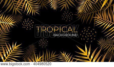 Luxurious Tropical Golden Palm Leaves On A Black Background. Night Jungle And Tropics Palm Trees. Sp