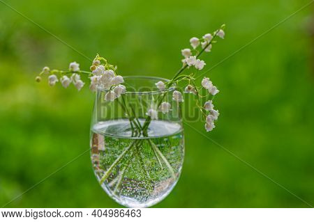 Lily Of The Valley Flowers In A Glass With Water On A Green Lawn Background. Spring Season.