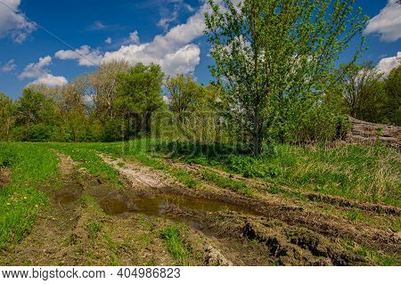Dirt Road In Swampy Area And Deciduous Forest On A Sunny Day. Spring Season. Web Banner. Ukraine. Eu