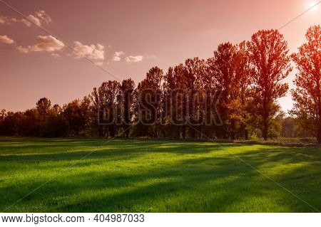 August Meadow In The Evening In The Countryside. Summer Season. Ukraine. Europe.