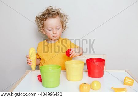 Toddler Playing With Learning Toys At Home Or Kindergarten. Baby Sorting Organising Objects Blocks W