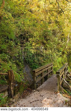 A Small Bridge On A Shady Footpath Along The Tolminka River Which Flows Through Tolmin Gorge In The