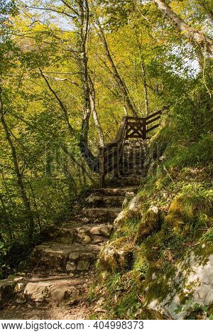A Shady Footpath Along The Tolminka River Which Flows Through Tolmin Gorge In The Triglav National P