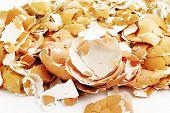pile broken shell eggs on white background poster
