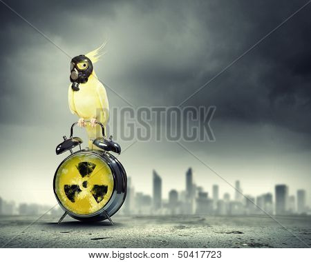 Image of yellow parrot in gas mask sitting on alarm clock. Ecology concept poster
