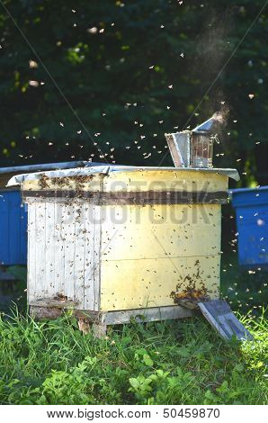 A swarm of bees trying to get into a beehive through a vent
