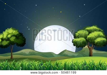 Illustration of a view of the forest in the middle of the night