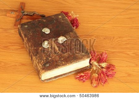 The Holy Book And Shells
