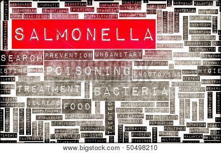 Salmonella Food Poisoning Concept Awareness and Prevention