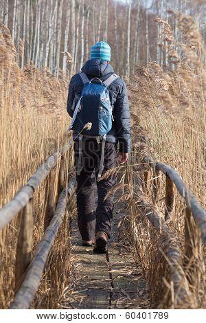 Man Walking In Hiking Trail