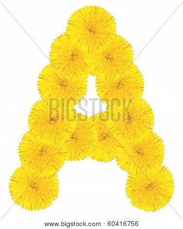 Letter A Made From Dandelions