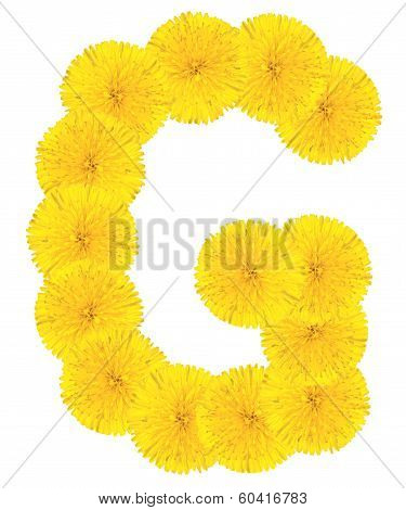Letter G Made From Dandelions