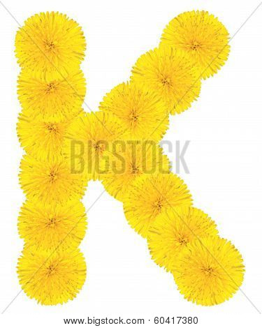 Letter K Made From Dandelions